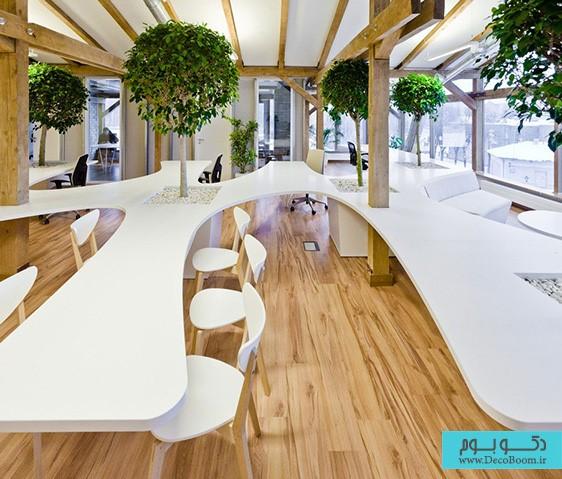 طراحی داخلی دفتر کار سبز | طراحی دکوراسیون اداری,دکوراسیون داخلی اداری,نورپردازی اداری