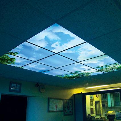 نمونه سقف کاذب مشبک | سقف کاذب | دیوار پوش | کف پوش | پارکت | کاغذ دیواری | لمینت
