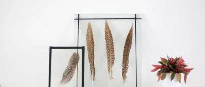 قاب عکس شیشه ای |قاب عکس های خلاقانه |قاب کردن گیاهان با قاب عکس شیشه ای